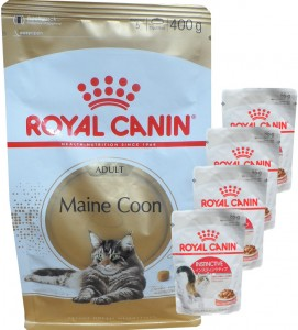 Royal Canin Maine Coon Adult + 4 x 85g Royal Canin Instinctive Frischebeutel GRATIS