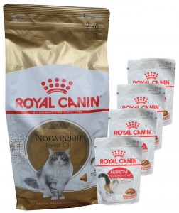 Royal Canin Norwegian Forest Cat Adult +  4 x 85g Royal Canin Instinctive Frischebeutel GRATIS